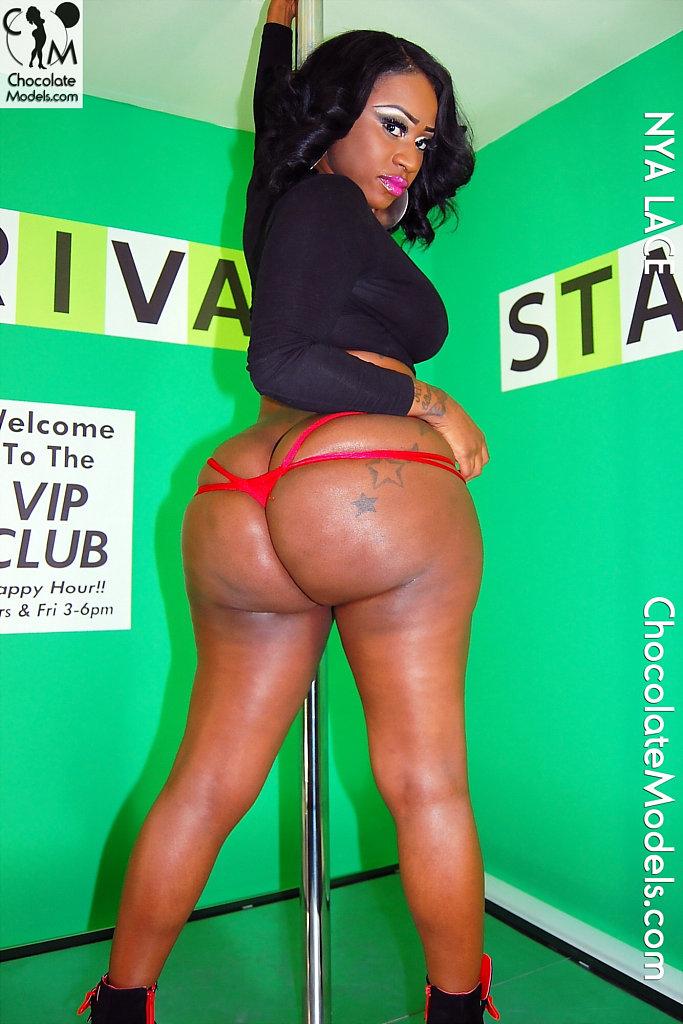 Bridgette b big wet butts